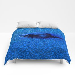 A Blue, Well-Fed Cat Comforters
