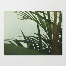 VV I Canvas Print