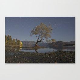 Starry Wanaka Tree Canvas Print