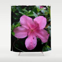 Asiatic Azaleas II Shower Curtain