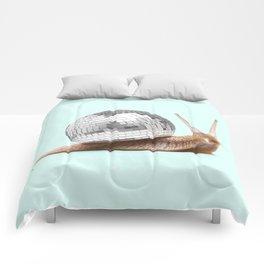DISCO SNAIL Comforters