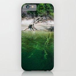 Lush rainforest on the water edge at Lake Te Anau, New Zealand iPhone Case