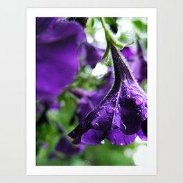 Dew Flowers Art Print