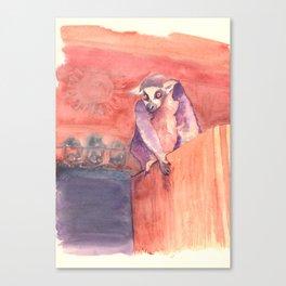 Madagascar's lemur catta Canvas Print