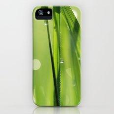 dew iPhone (5, 5s) Slim Case