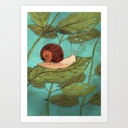 Schnecke Art Print