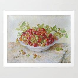 gooseberries, original oil painting Art Print