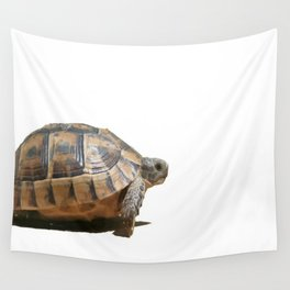 Sideview of A Walking Turkish Tortoise Isolated Wall Tapestry