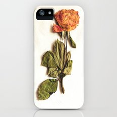 Rose Slim Case iPhone (5, 5s)