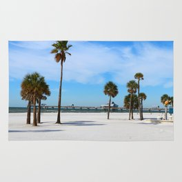 A Florida Winterday Rug