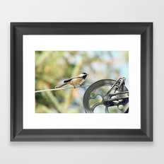Chick on a line Framed Art Print