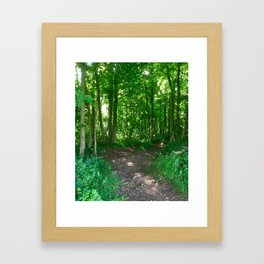 Two Roads Diverge Framed Art Print