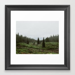 Mt. Shasta, November II Framed Art Print