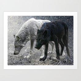 ivory and ebony Art Print
