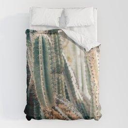 Desert Ombre Comforters