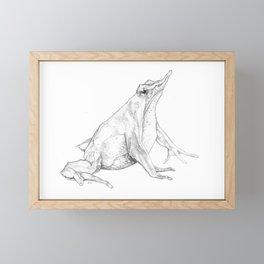 Rhinoderma rufum (Northern Darwin's frog) Framed Mini Art Print