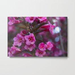 Pink Flowers with Bokah Metal Print
