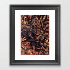 leaves evolved 5 Framed Art Print