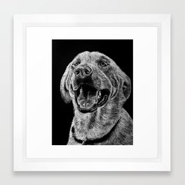 Golden Lab Framed Art Print