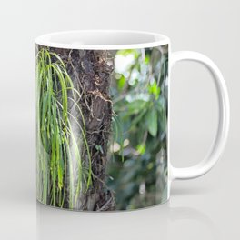 Epiphyte growth on tree in rainforest Coffee Mug