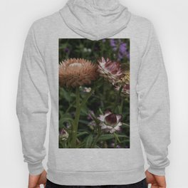 Color Therapy with Nature Hoody