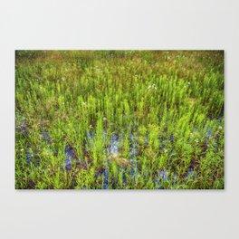 Prairie Oil Canvas Print