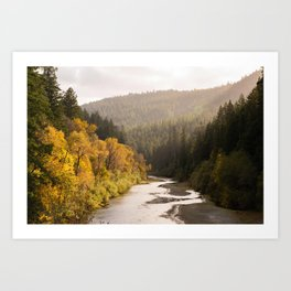 Humboldt County Fall Colors, Autumn Decor, Redwoods, Avenue of the Giants California Photography  Art Print