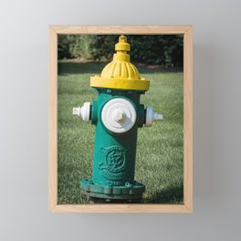Clow Eddy Valve Div Fire Plug Yellow White and Green Fire Hydrant  Framed Mini Art Print