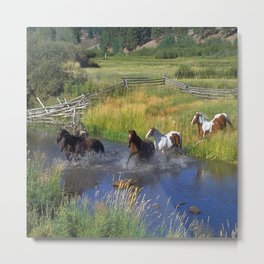 Horses Running Through Water Metal Print