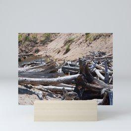 Drift Wood Mini Art Print