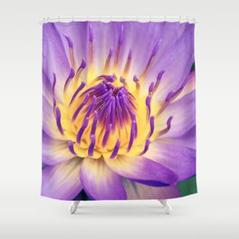 Ao Lani Heavenly Light Shower Curtain