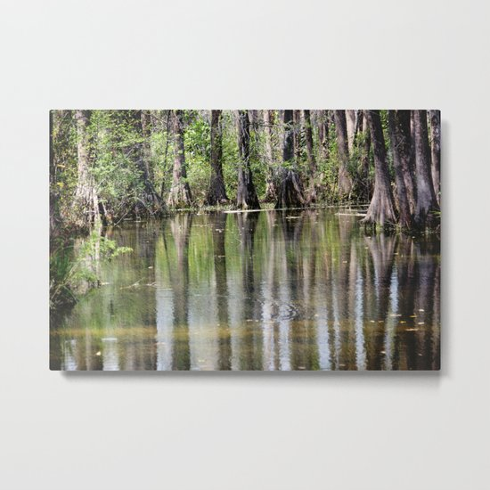 Cypress Mirror Metal Print
