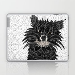 Pomeranian Puppy 2016 Laptop & iPad Skin