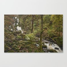 Lodore Falls waterfall after heavy rain. Borrowdale, Cumbria, UK. Canvas Print