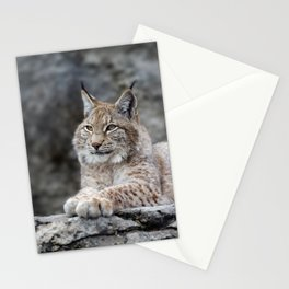 Young lynx portrait Stationery Cards
