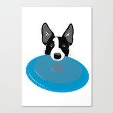 Border Collie - Disc Dog 2 Canvas Print