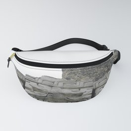 A New Perspective Fanny Pack