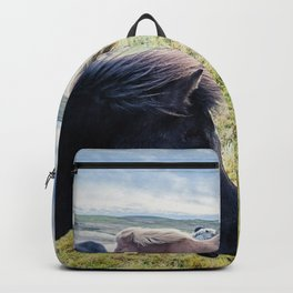 Icelandic Horses. Backpack