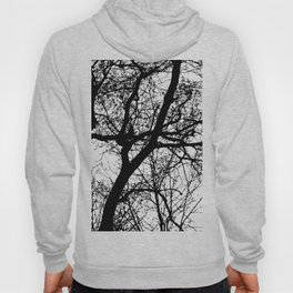 Branches 2 Hoody