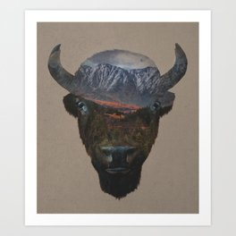 Bison Peak Art Print