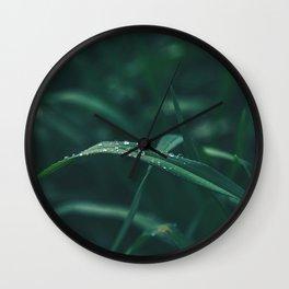 Garden Close Up Wall Clock