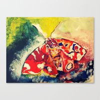 moth Canvas Prints featuring Moth by Hilary Dow