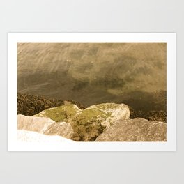 Turbidity Art Print