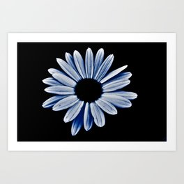 Black hole daisy Art Print