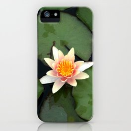 White and yellow Lotus iPhone Case