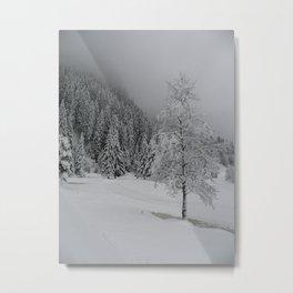 Winter Serenity Metal Print