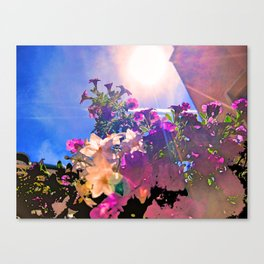 ST-art Flowers 1 Canvas Print