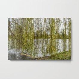 Nature Tree Under the Weeping Soil Metal Print