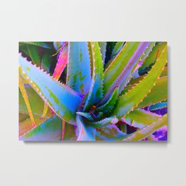 aloe no.2 Metal Print