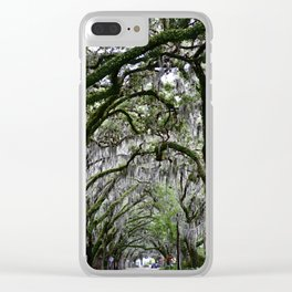 """""""Youthful Contours"""" Tree Tunnel Photo - St. Augustine Fl. Clear iPhone Case"""